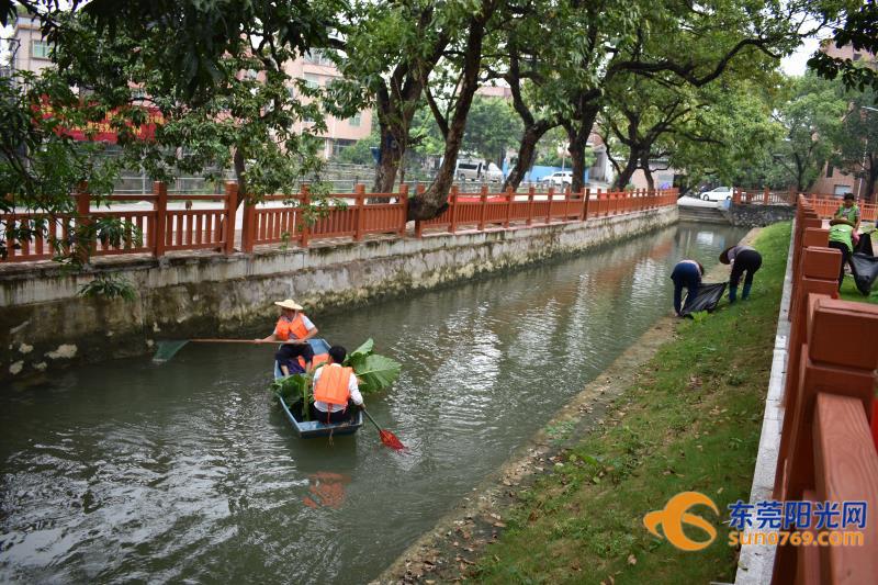 bob首页:中堂:坚持做好河涌清理保洁 水质明显改善
